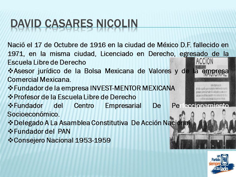 DAVID CASARES NICOLIN