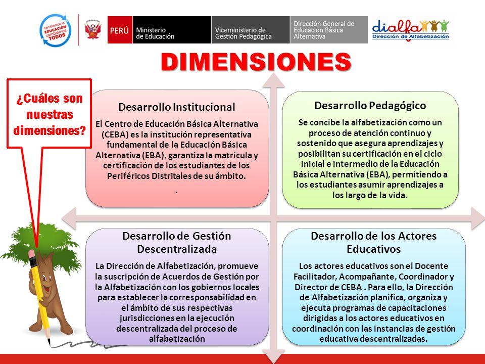 DIMENSIONES ¿Cuáles son nuestras dimensiones Desarrollo Institucional
