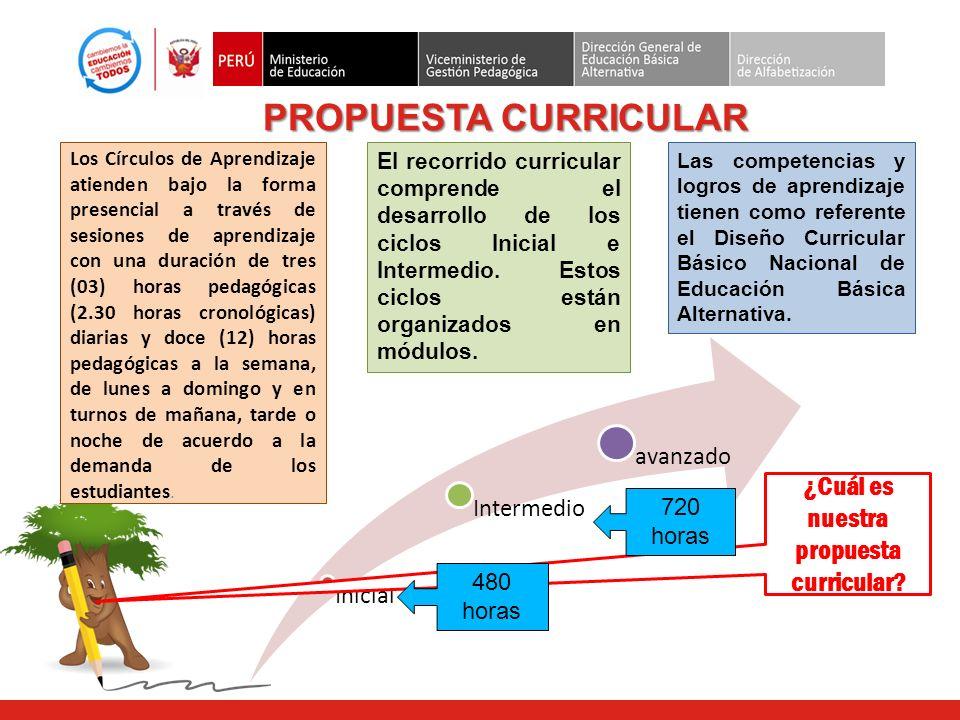 ¿Cuál es nuestra propuesta curricular