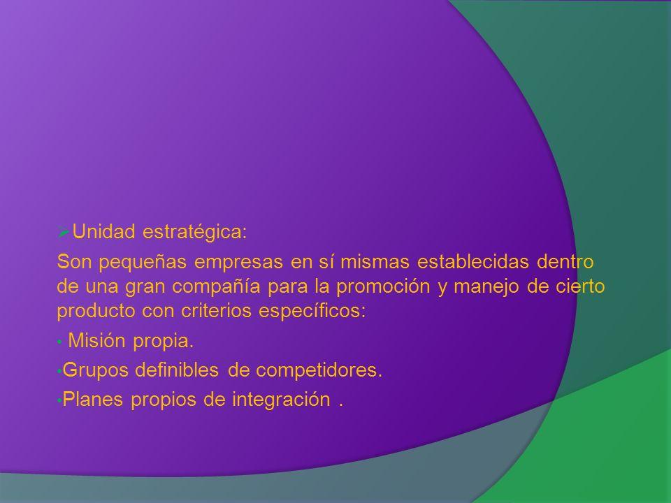 Unidad estratégica: