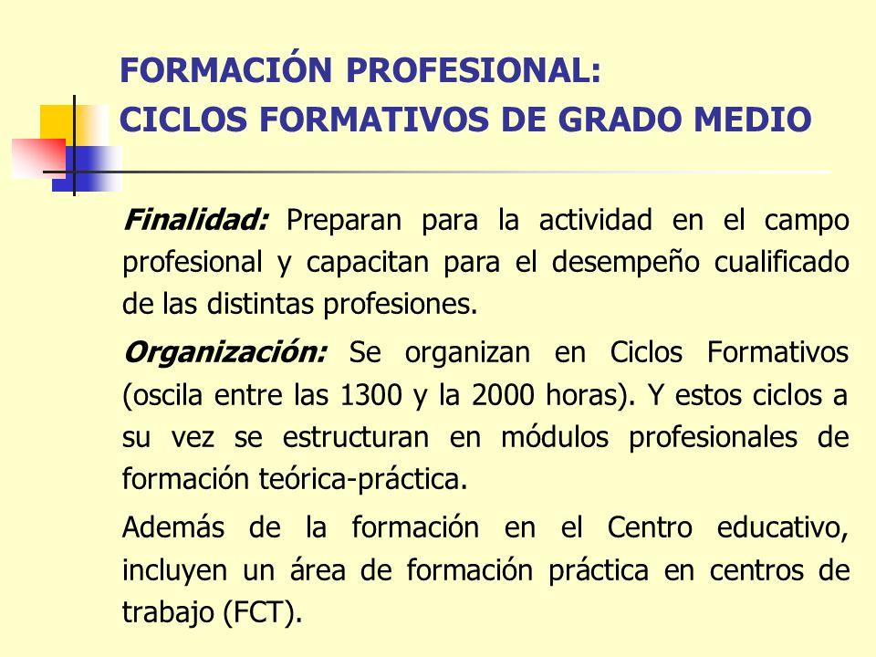 FORMACIÓN PROFESIONAL: CICLOS FORMATIVOS DE GRADO MEDIO