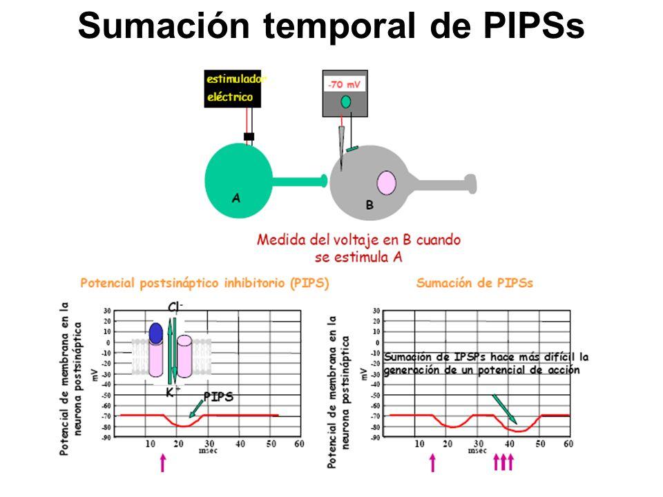 Sumación temporal de PIPSs