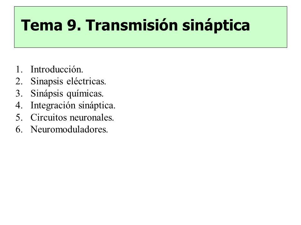 Tema 9. Transmisión sináptica