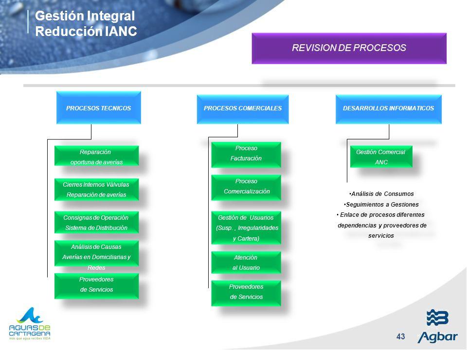 Gestión Integral Reducción IANC