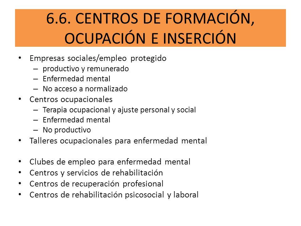 6.6. CENTROS DE FORMACIÓN, OCUPACIÓN E INSERCIÓN