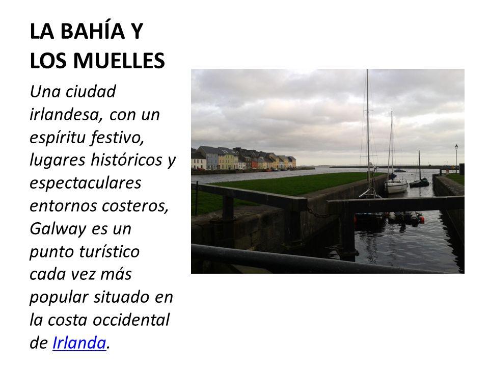 LA BAHÍA Y LOS MUELLES