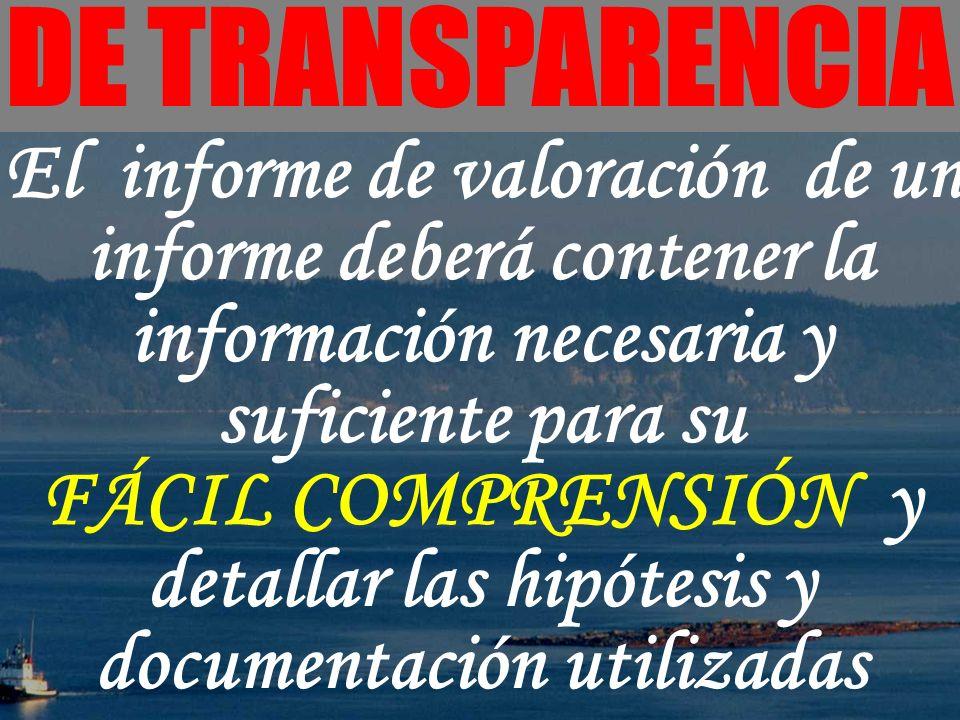 FÁCIL COMPRENSIÓN y detallar las hipótesis y documentación utilizadas