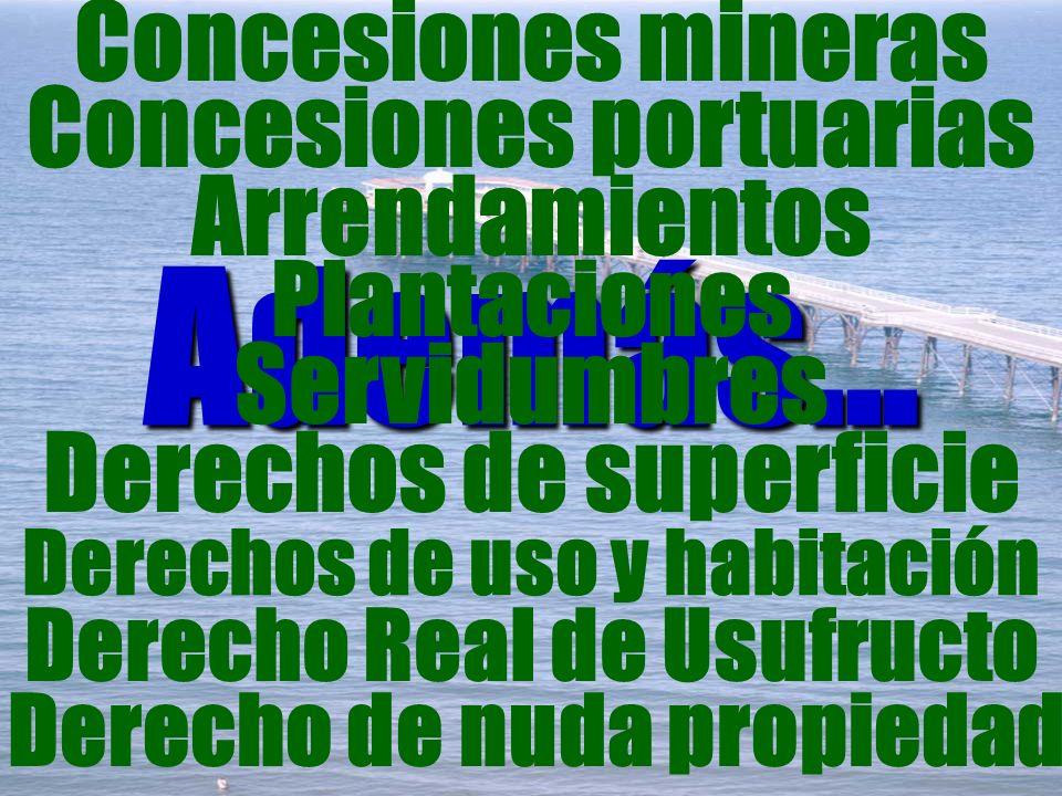 Además... Concesiones mineras Concesiones portuarias Arrendamientos