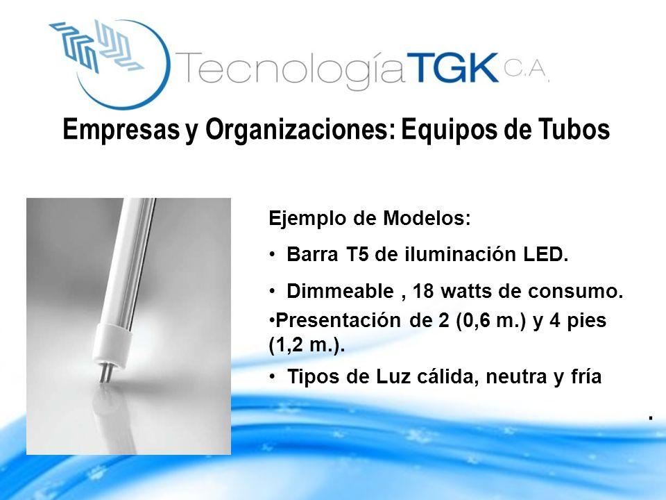 Empresas y Organizaciones: Equipos de Tubos