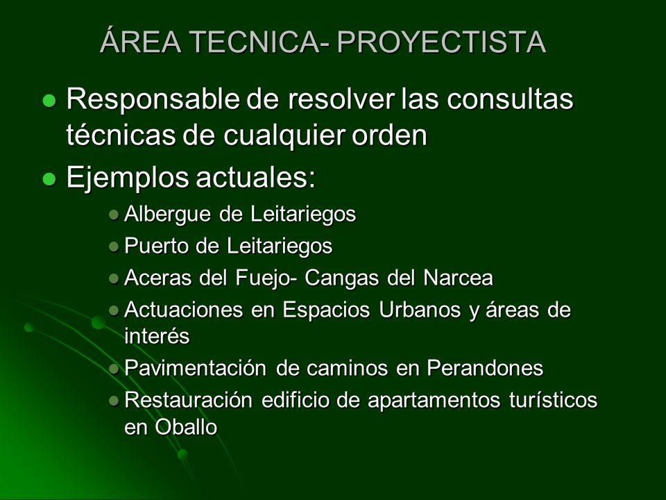 ÁREA TECNICA- PROYECTISTA