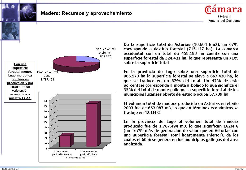 Madera: Recursos y aprovechamiento