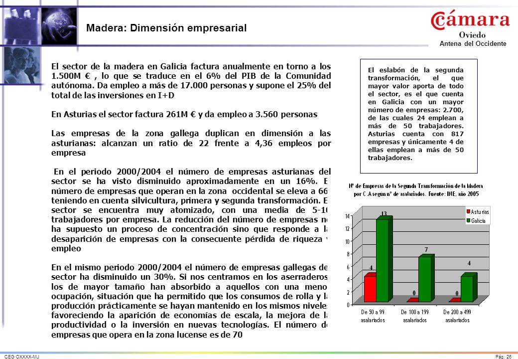 Madera: Dimensión empresarial