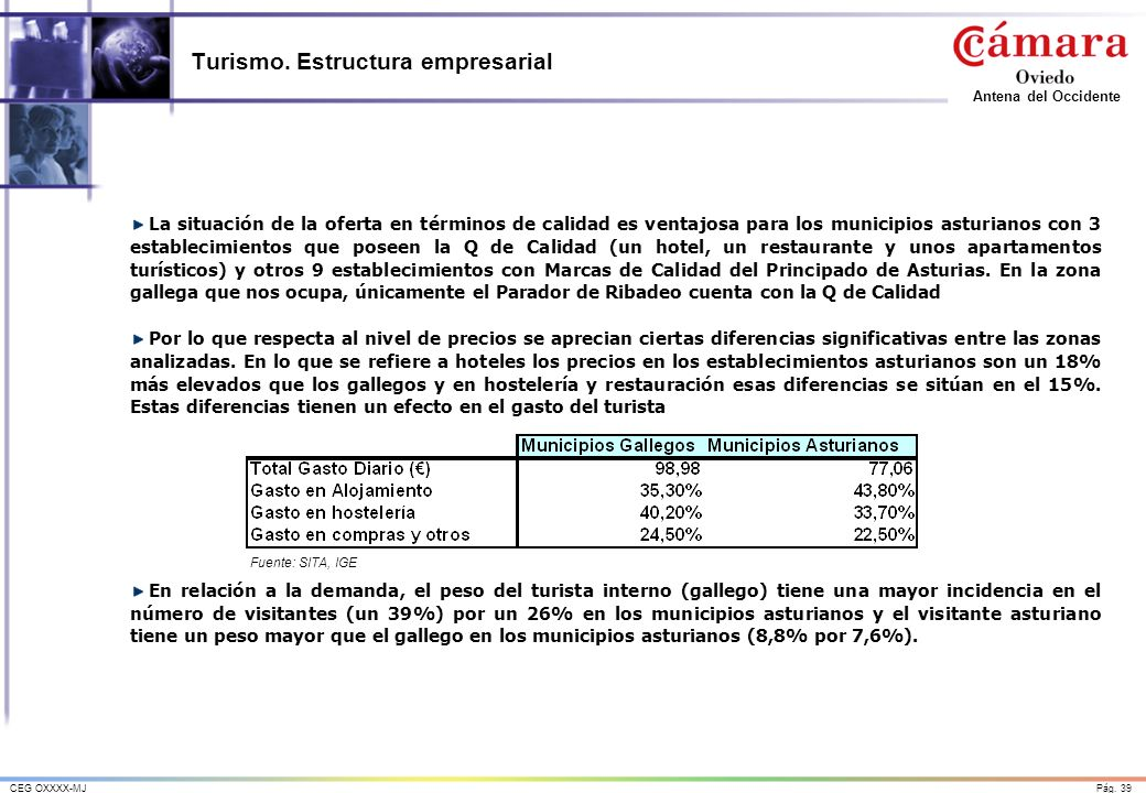 Turismo. Estructura empresarial