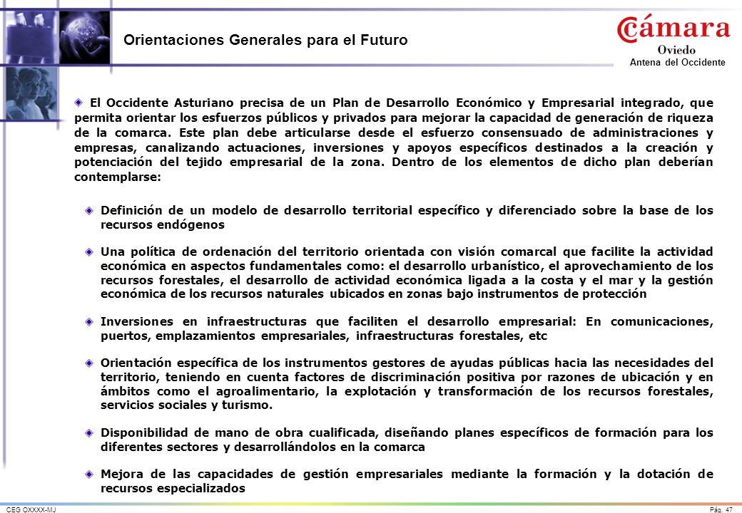 Orientaciones Generales para el Futuro