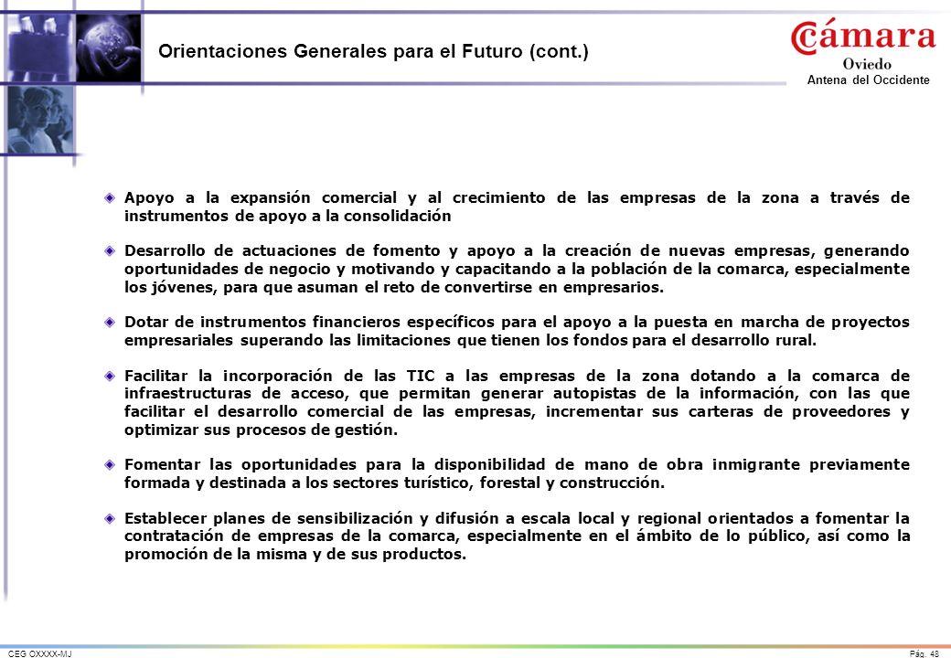 Orientaciones Generales para el Futuro (cont.)