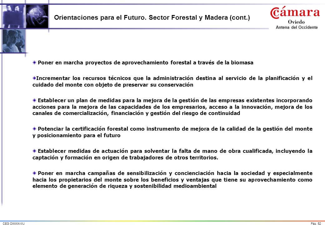 Orientaciones para el Futuro. Sector Forestal y Madera (cont.)