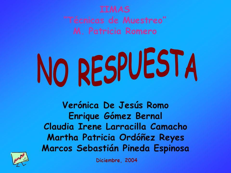 NO RESPUESTA IIMAS Técnicas de Muestreo M. Patricia Romero