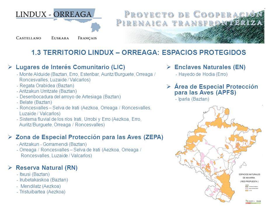 1.3 TERRITORIO LINDUX – ORREAGA: ESPACIOS PROTEGIDOS
