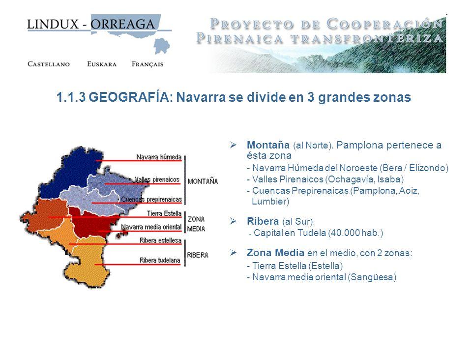 1.1.3 GEOGRAFÍA: Navarra se divide en 3 grandes zonas