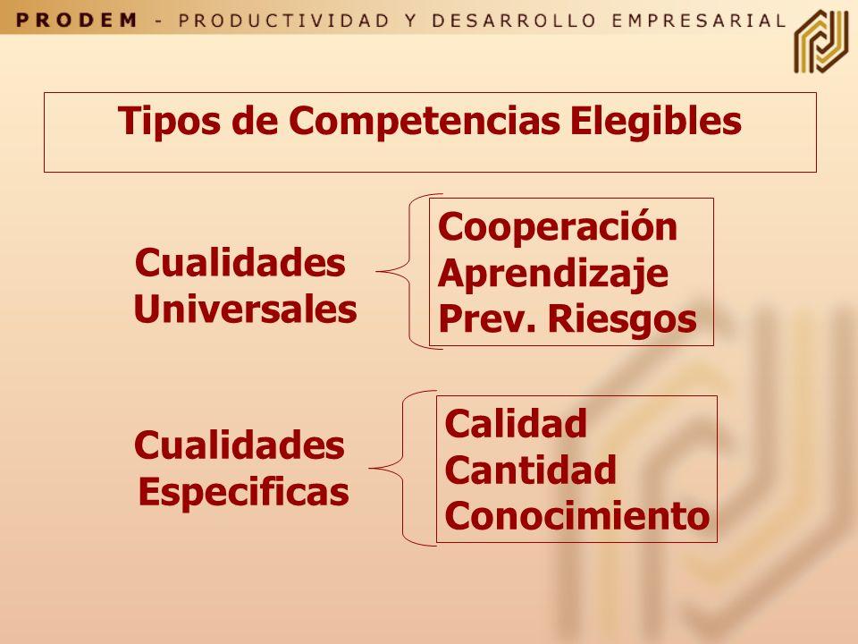 Tipos de Competencias Elegibles