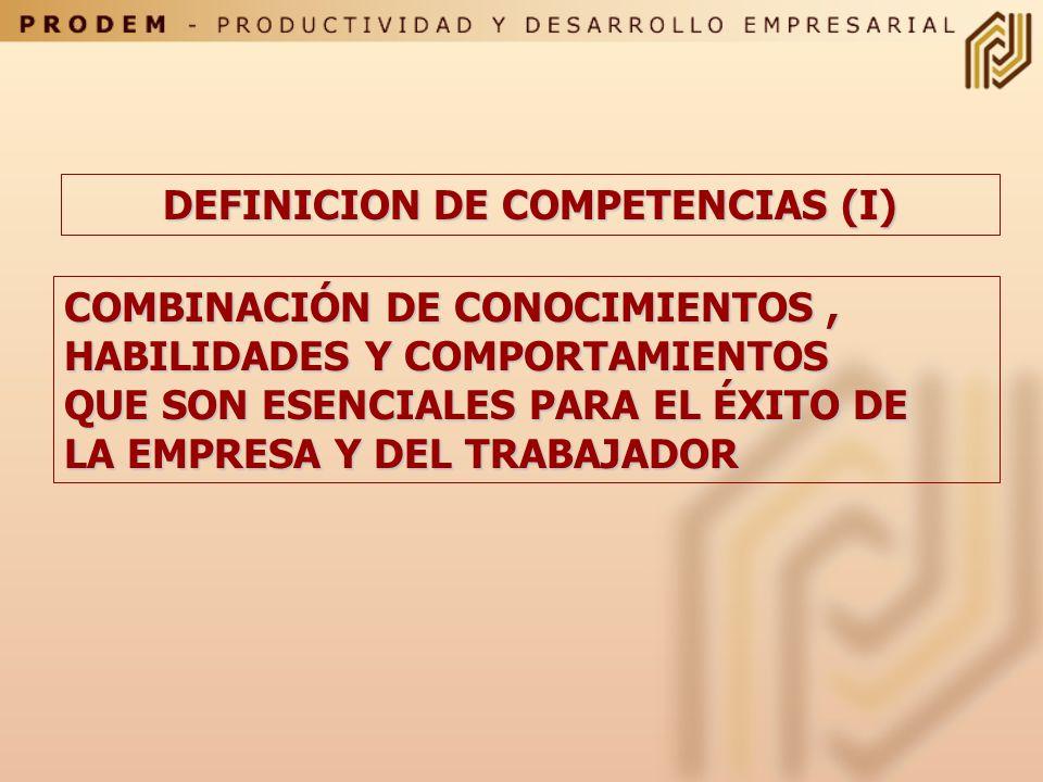 DEFINICION DE COMPETENCIAS (I)