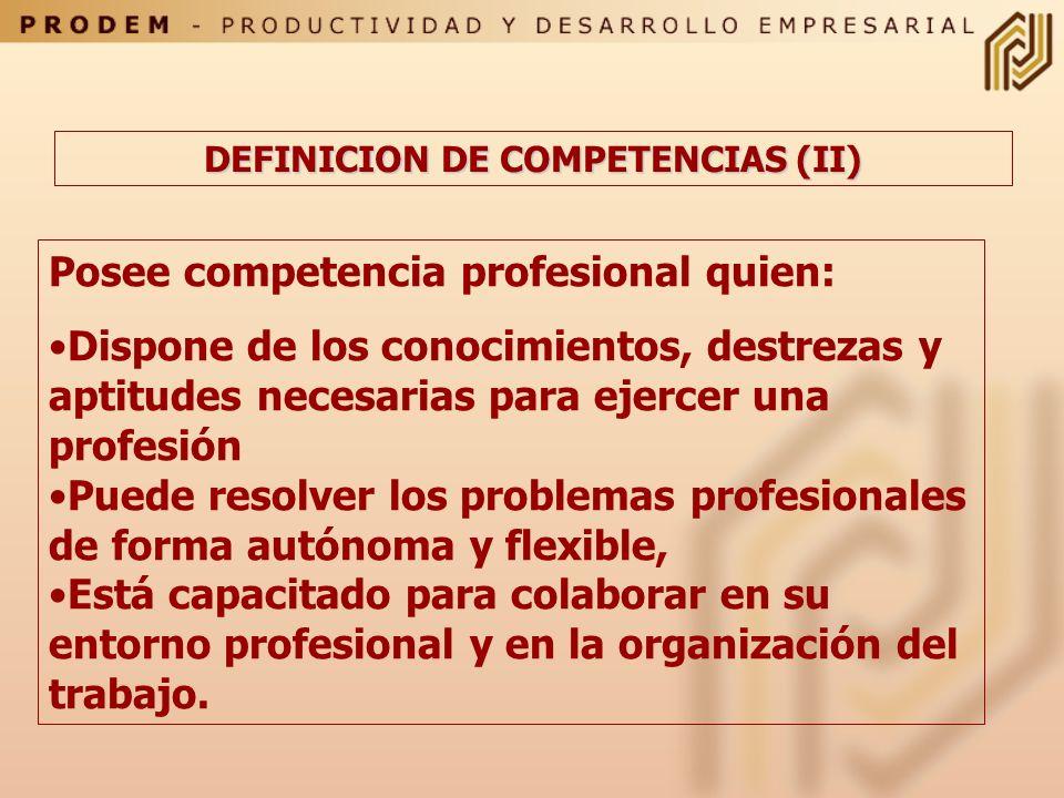 DEFINICION DE COMPETENCIAS (II)