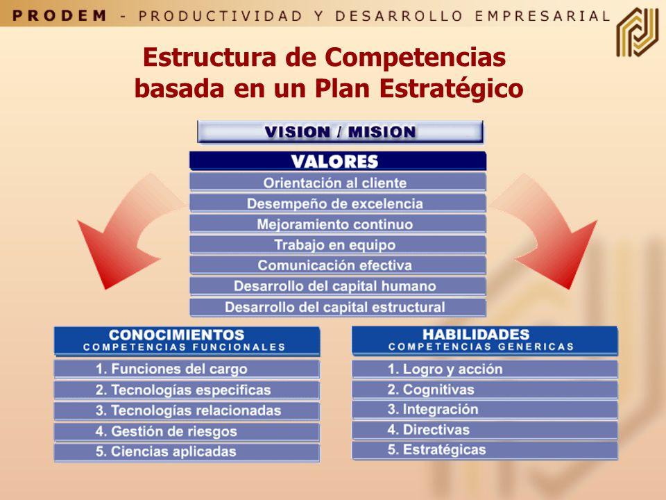 Estructura de Competencias basada en un Plan Estratégico