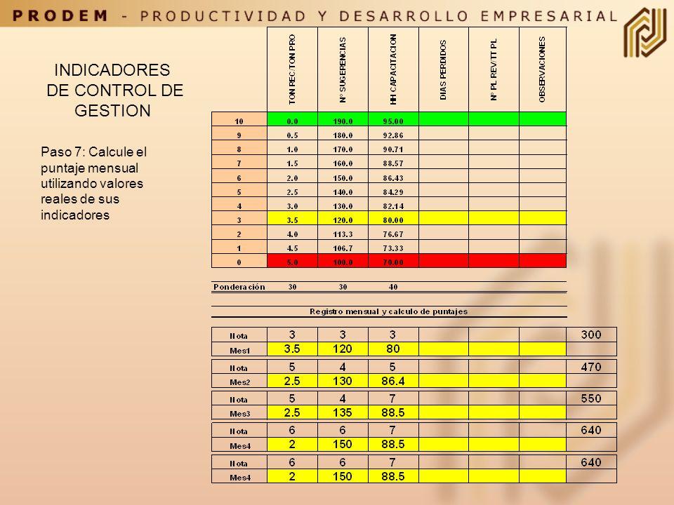 INDICADORES DE CONTROL DE GESTION