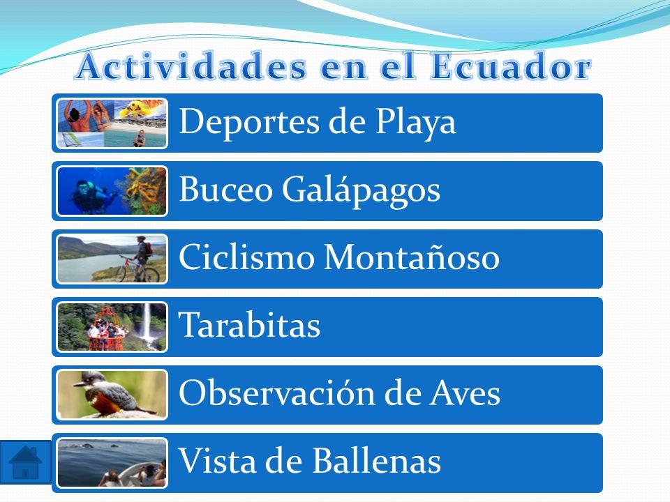 Actividades en el Ecuador
