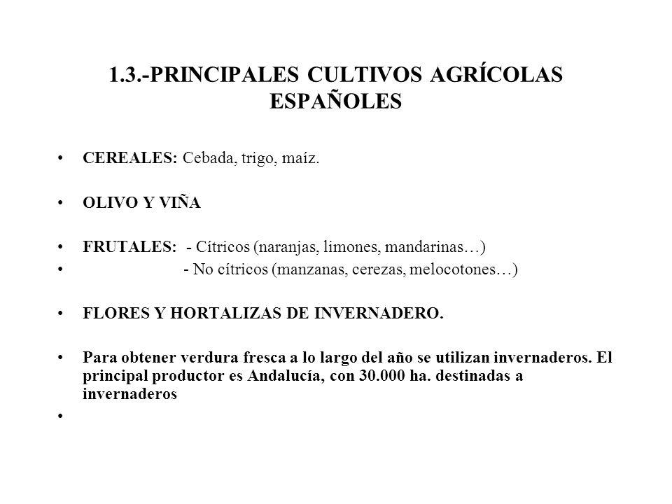 1.3.-PRINCIPALES CULTIVOS AGRÍCOLAS ESPAÑOLES