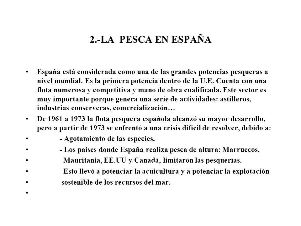 2.-LA PESCA EN ESPAÑA