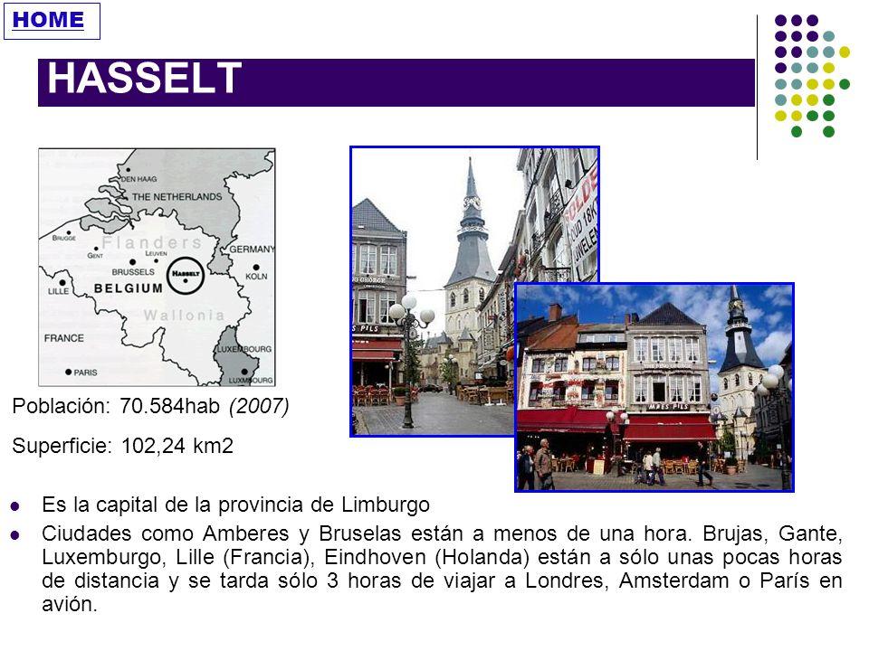 HASSELT HOME Población: 70.584hab (2007) Superficie: 102,24 km2
