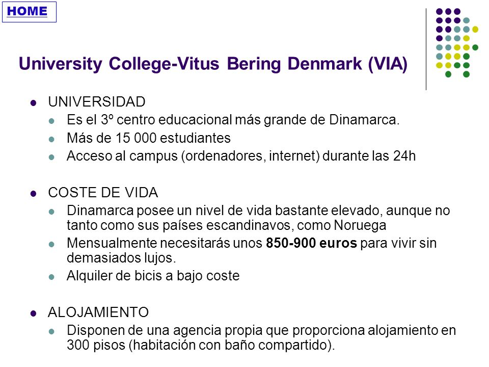 University College-Vitus Bering Denmark (VIA)