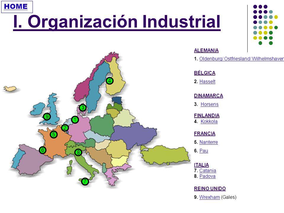 I. Organización Industrial
