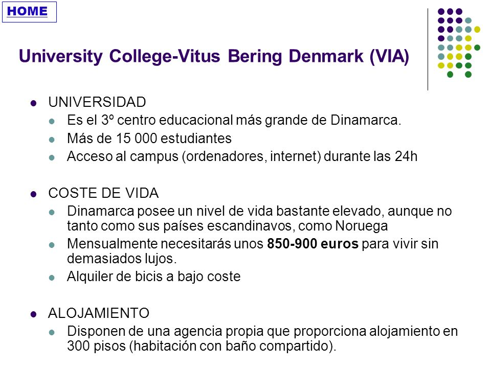 University College-Vitus Bering Denmark (VIA)