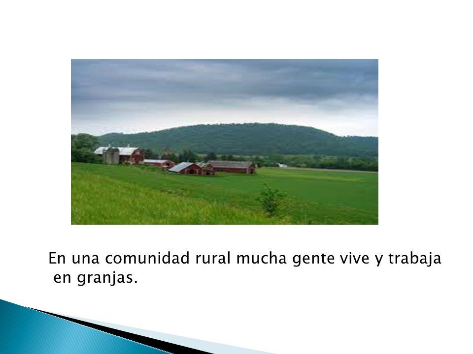 En una comunidad rural mucha gente vive y trabaja