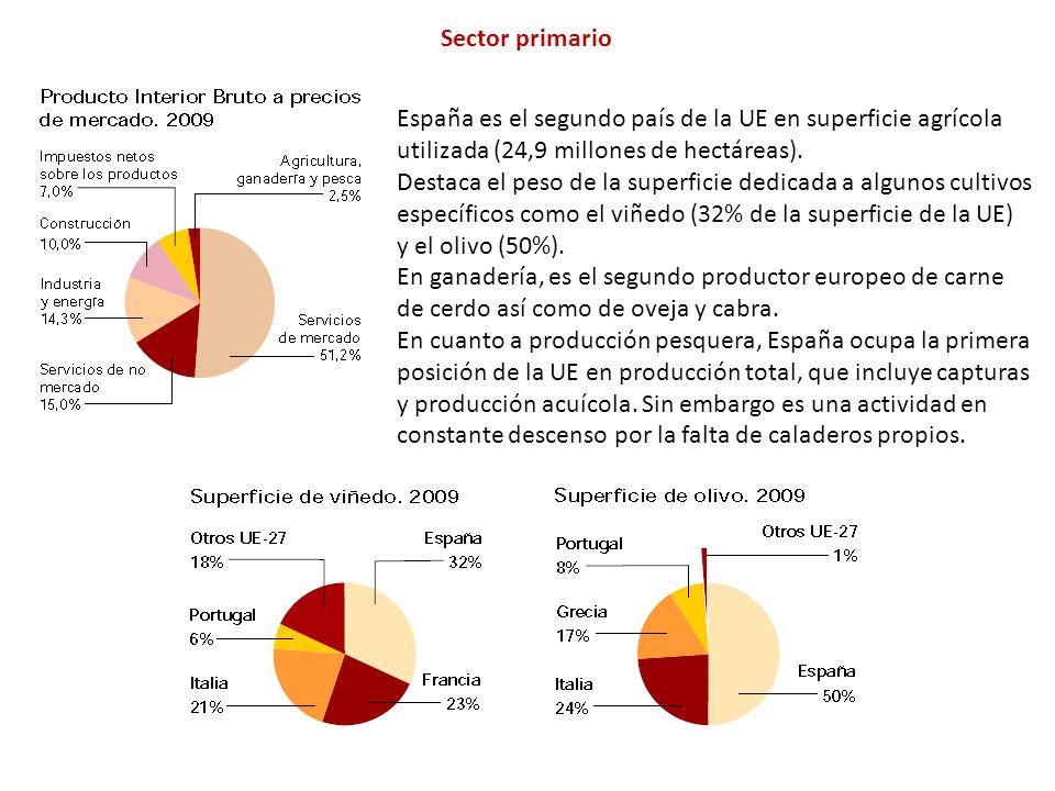 Sector primario España es el segundo país de la UE en superficie agrícola utilizada (24,9 millones de hectáreas).