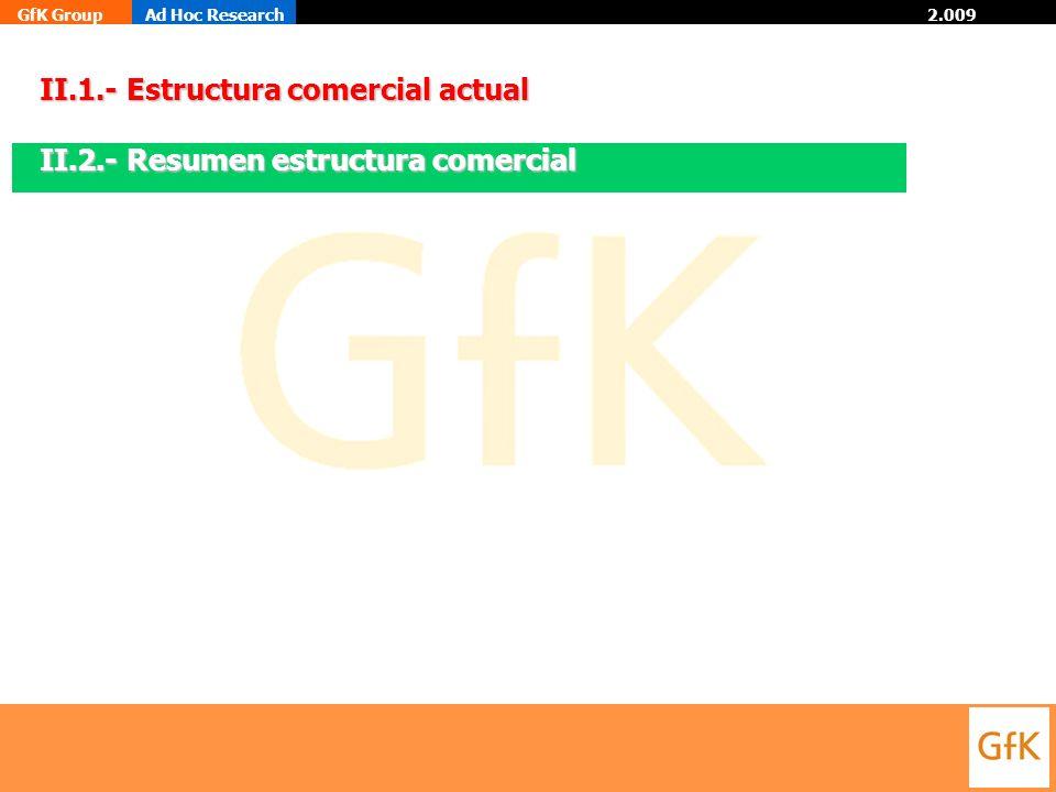 II.1.- Estructura comercial actual