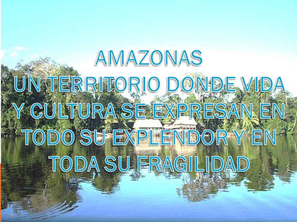 AMAZONAS UN TERRITORIO DONDE VIDA Y CULTURA SE EXPRESAN EN TODO SU EXPLENDOR Y EN TODA SU FRAGILIDAD