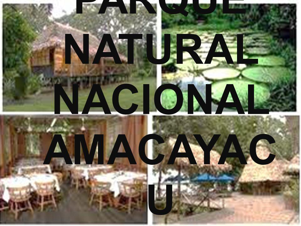 Parque Natural Nacional Amacayacu