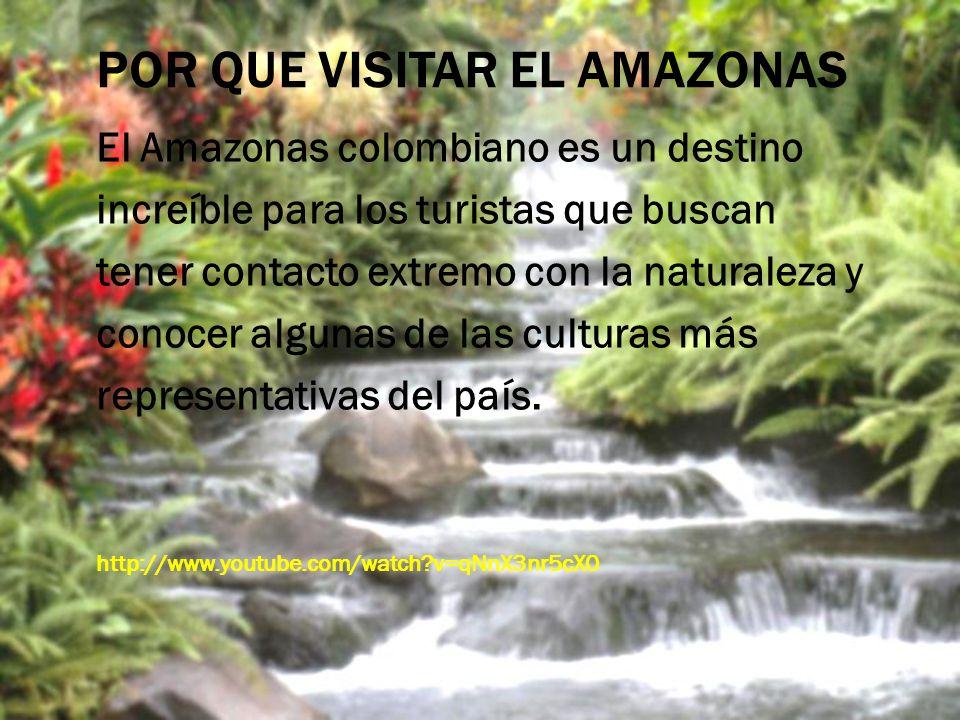 POR QUE VISITAR EL AMAZONAS