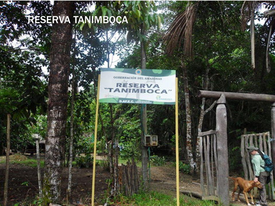 Reserva Tanimboca