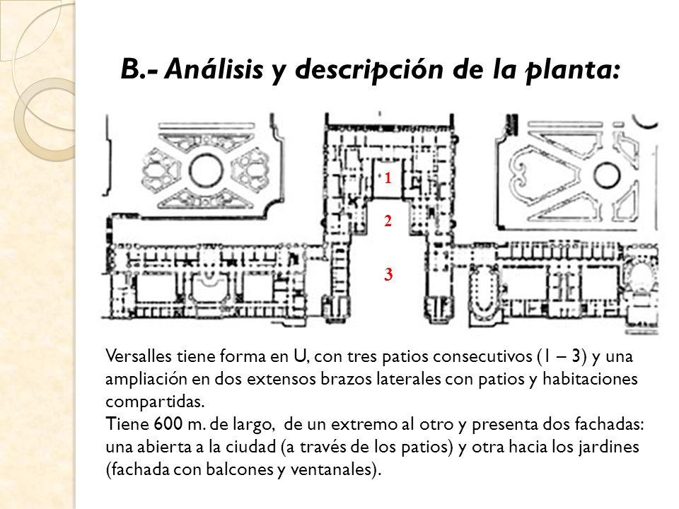 B.- Análisis y descripción de la planta: