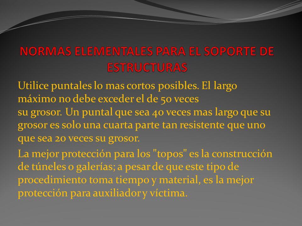 NORMAS ELEMENTALES PARA EL SOPORTE DE ESTRUCTURAS