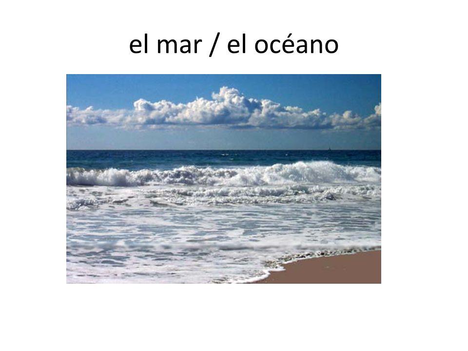 el mar / el océano