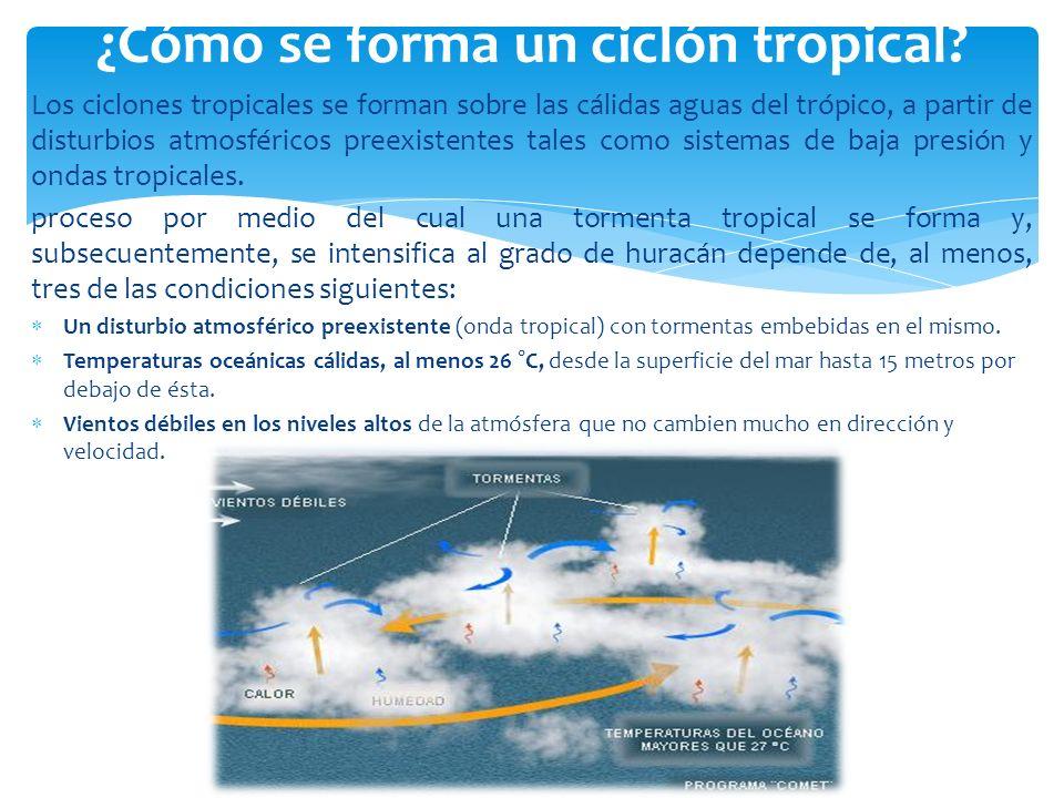 ¿Cómo se forma un ciclón tropical