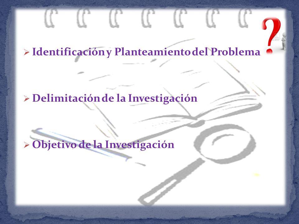 Identificación y Planteamiento del Problema