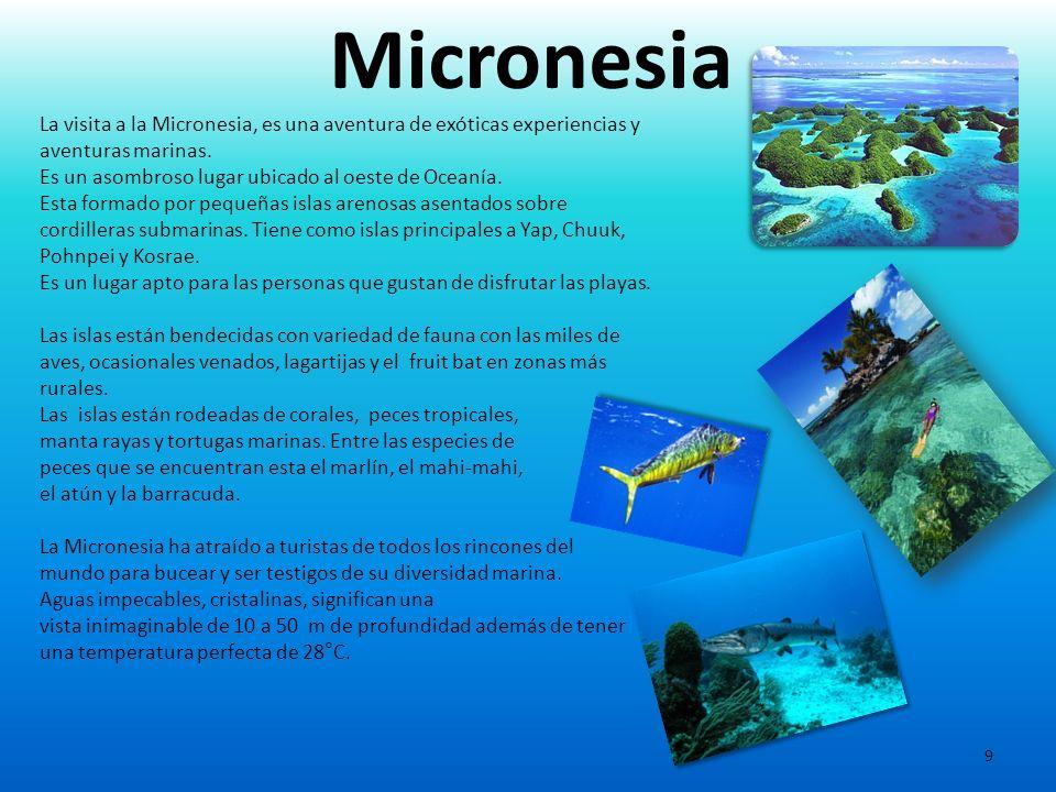 Micronesia La visita a la Micronesia, es una aventura de exóticas experiencias y aventuras marinas.