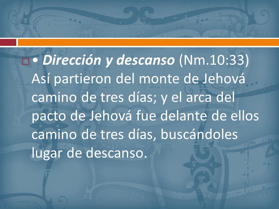 • Dirección y descanso (Nm