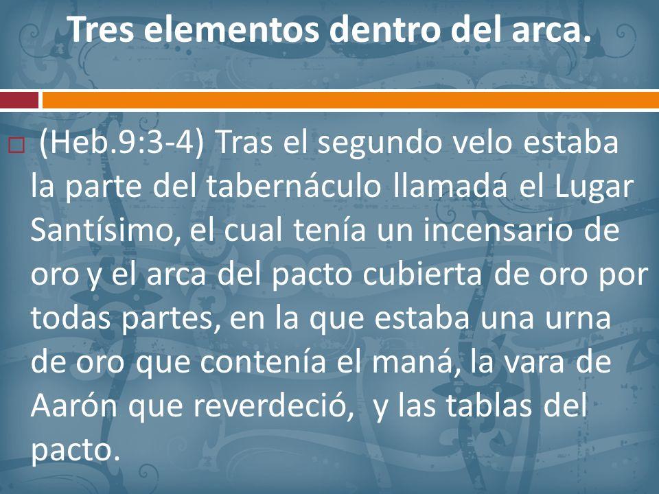 Tres elementos dentro del arca.